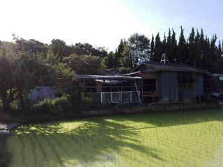 仏生山町甲住宅用地 145.31坪