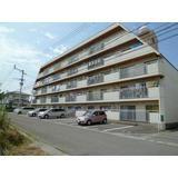 徳島県徳島市末広の賃貸マンション(PD001306)