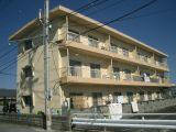 板野郡松茂町中喜来字福有開拓193-14 マンション