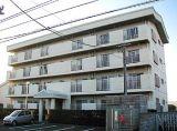 板野郡松茂町中喜来字福有開拓193-10 マンション