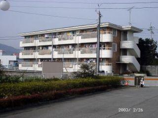 吉野川市鴨島町上下島 2DKアパート
