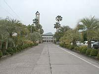 聖カタリナ大学